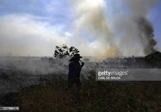 Farm worker tries to put out an illegal fire which burned part of the Amazon rainforest reserve and was spreading to their land north of Sinop, in...