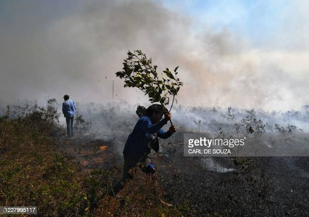 Farm workers try to put out an illegal fire which burned part of the Amazon rainforest reserve and was spreading to their land north of Sinop in Mato...
