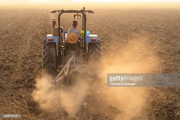 farmer agriculture tractor asia farm rice manioc - parto natural imagens e fotografias de stock