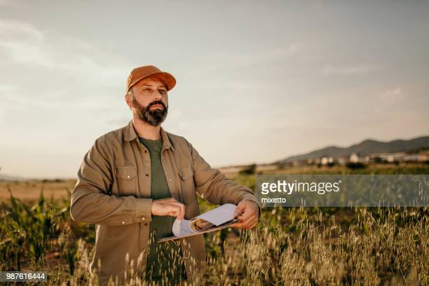 farmer analyzes his field - agronomist stock pictures, royalty-free photos & images