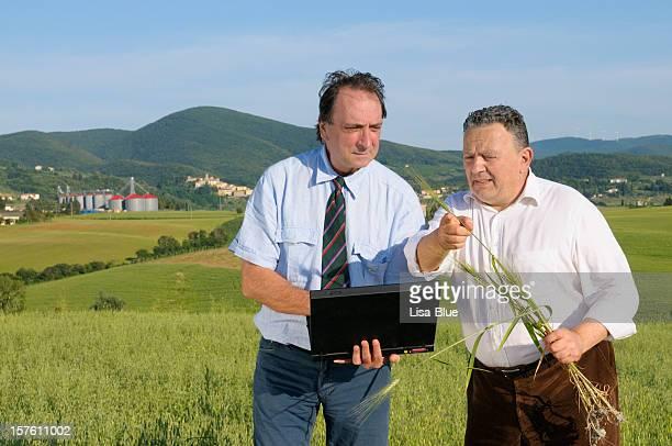 Agrónomo con capacidad para computadora portátil y un agricultor en un campo de trigo