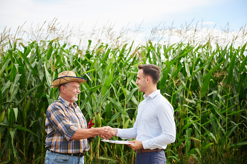 Farmer and businessman shaking hands at the cornfield - gettyimageskorea