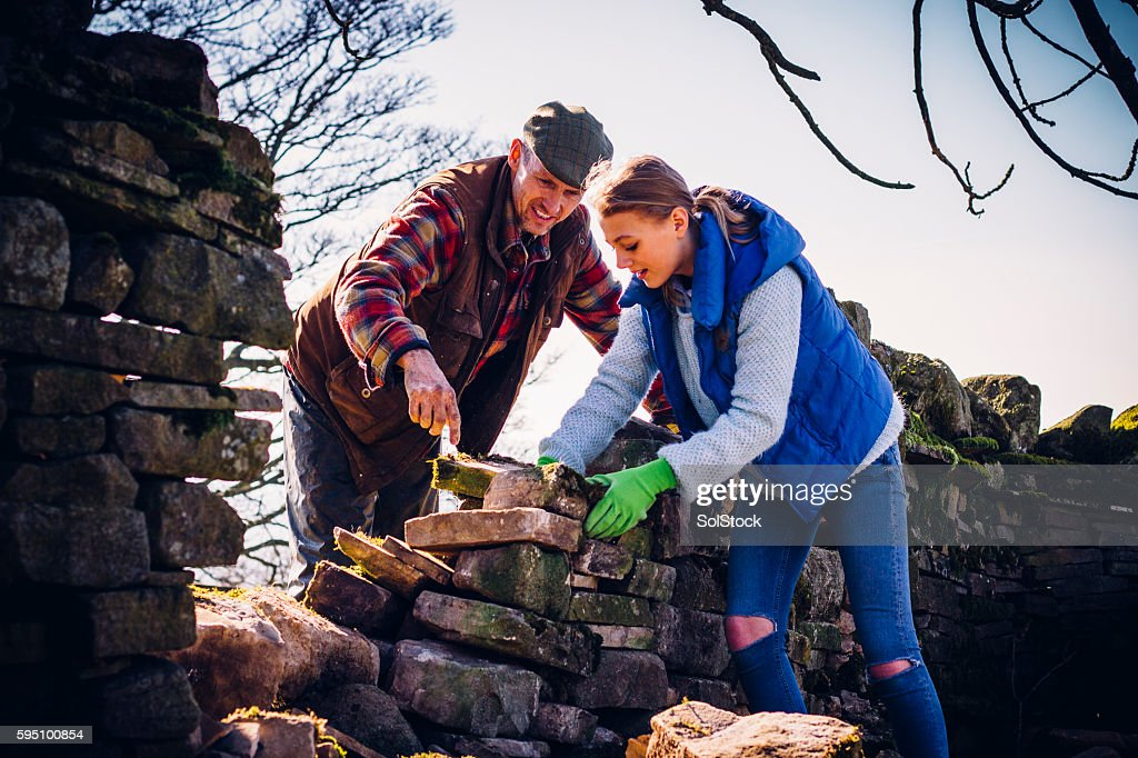 Farmer and Daughter Repairing an Old Stone Wall : Stock Photo
