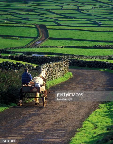 農家やロバ、バギー歩いて Rural Road
