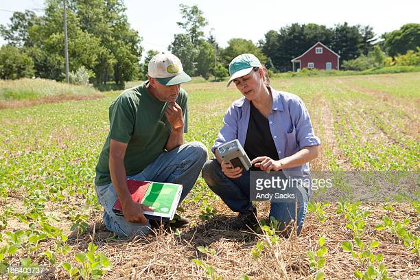 farmer and farm consultant in soybean field - スマート農業 ストックフォトと画像