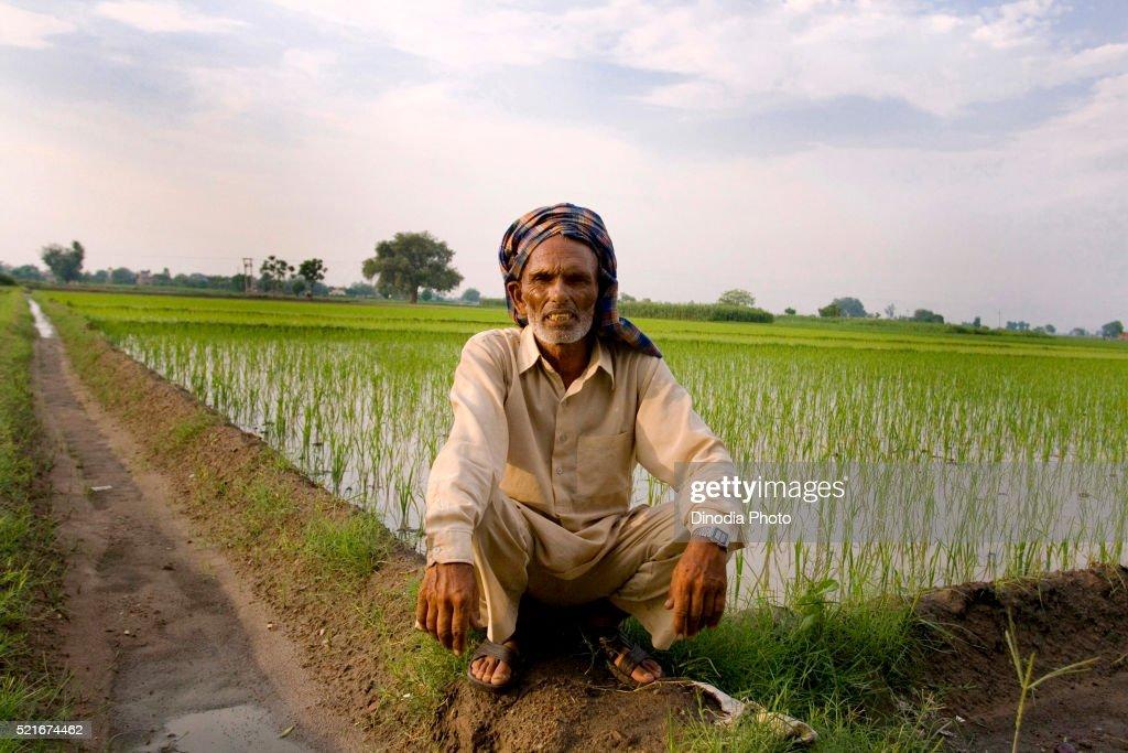 Farmer and farm in background, Mehar Kotala district near Ludhiana, Punjab, India