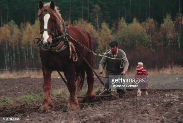 farmer and granddaughter plowing field - bialowieza forest stock pictures, royalty-free photos & images