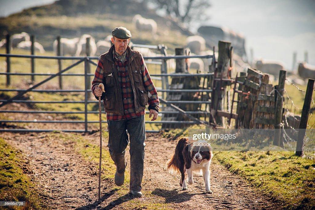 Farmer and his Dog : Stock Photo