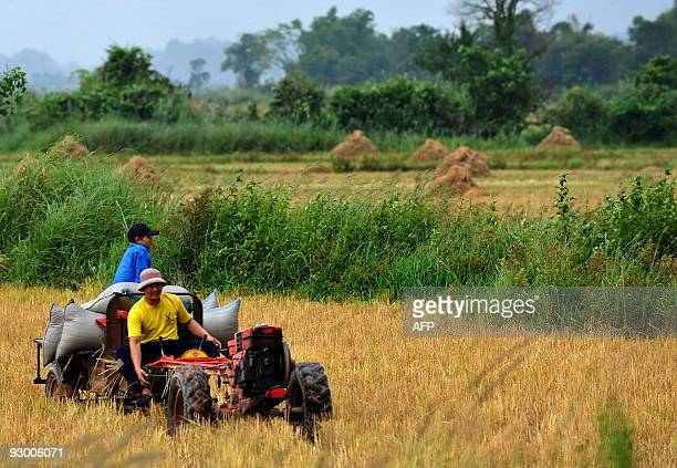 A farmer and his son harvest their rice field on a Chinese made tractor in Muang Sing northern Laos on October 13 2009 Lying on the broad river...