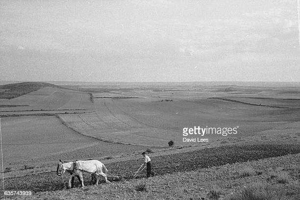 A farmer and his team plough in the vast landscape of CastillaLeon Spain | Location near Soria province CastillaLeon region Spain