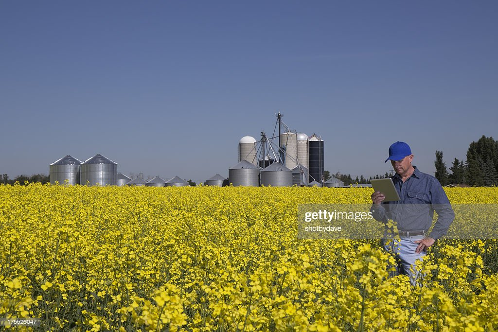 Farmer and Silos : Stock Photo