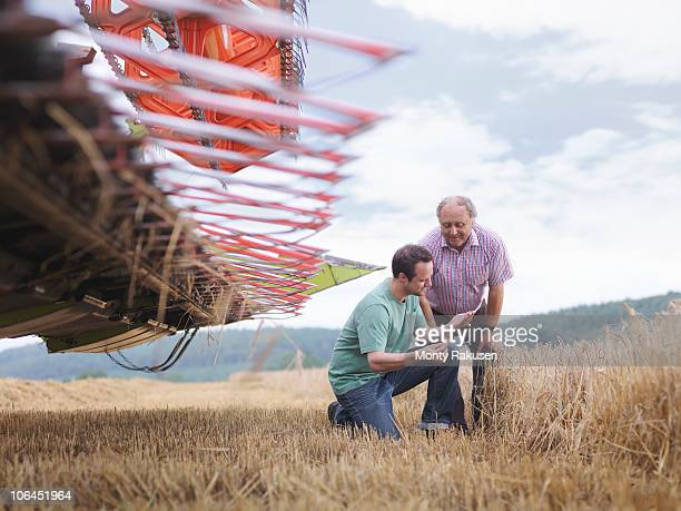 Farmer and son inspecting crop