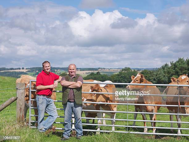Farmer and son with Guernsey cows