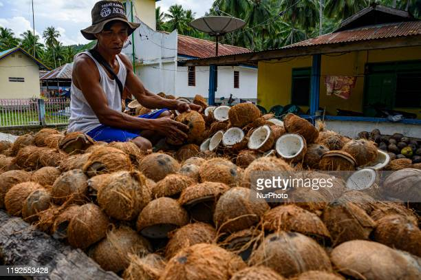 A farmer arranges his coconut for copra in Poi Village Sigi Regency Central Sulawesi Indonesia on January 8 2020 Coconut farmers in the region...
