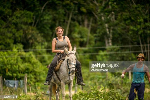 farmer assists a young woman on a mule through the jungle - one animal stock pictures, royalty-free photos & images