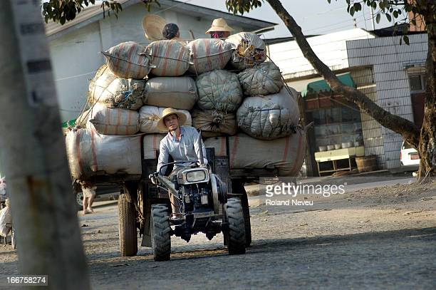 Farmer at work in the coutryside near Ruilli, at the border with Burma..