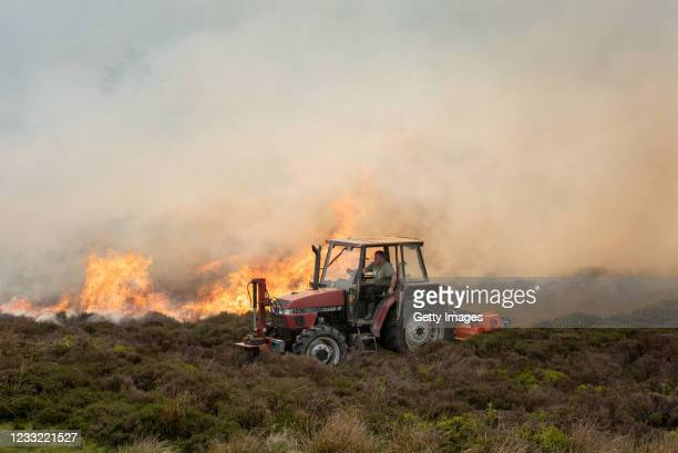 Farmer attempts to create a firebreak through heather and gorse as a wildfire rages across the hills of the Clwydian Range, above the village of...