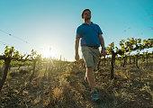 klawer south africa farmer barend vorster