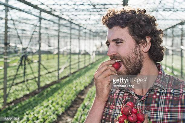 Farmer biting into radish