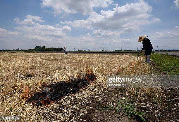 A farmer burns a wheat field after harvesting in Chiyoda Town Gunma Prefecture Japan on Sunday June 7 2015 Japan's gross domestic product expanded an...