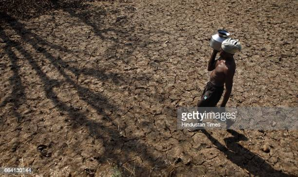 A farmer carries water on parched land near Shivajinagar in Jawhar taluka Water scarcity has hit the region with people having to walk several...