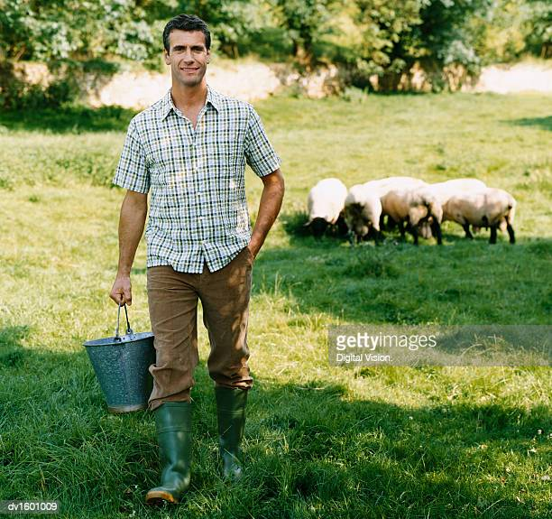 Farmer Carrying a Bucket in a Field With a Small Group of Sheep