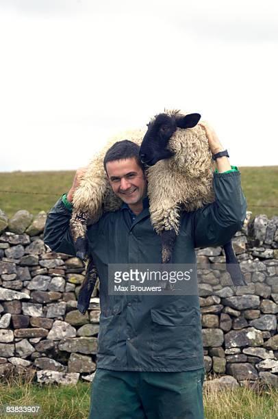 A farmer carrying a sheep.
