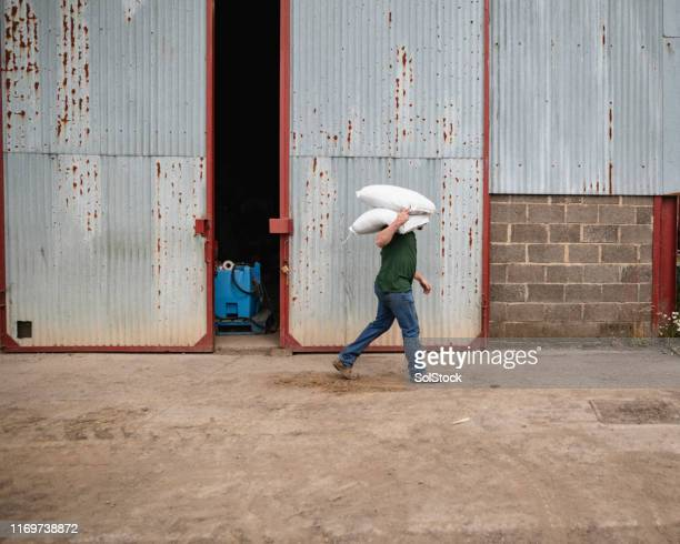 farmer carrying farming bags - carrying stock pictures, royalty-free photos & images