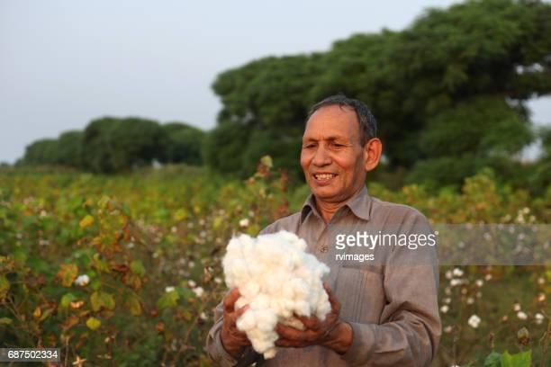 Farmer Carrying Fresh Cotton