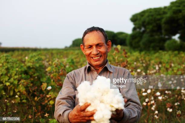 farmer carrying fresh cotton - cotton stock pictures, royalty-free photos & images