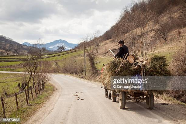 Farmer carrying hay on his cart