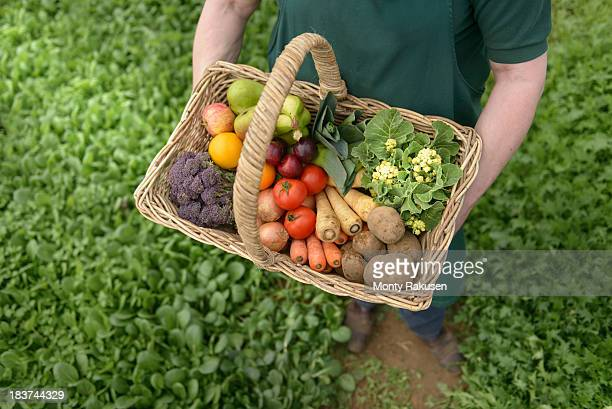 farmer carrying organic vegetables in basket for delivery, close up - tadcaster stock photos and pictures