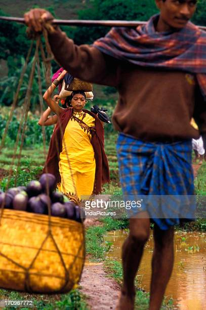 Farmer carrying produce Koraput district Orissa India