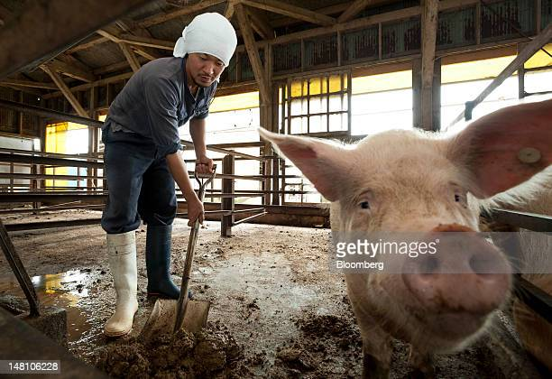 A farmer cleans in a pigsty at a farm in Chiyoda Town Gunma Prefecture Japan on Sunday July 8 2012 Japan aims to boost its food selfsufficiency the...