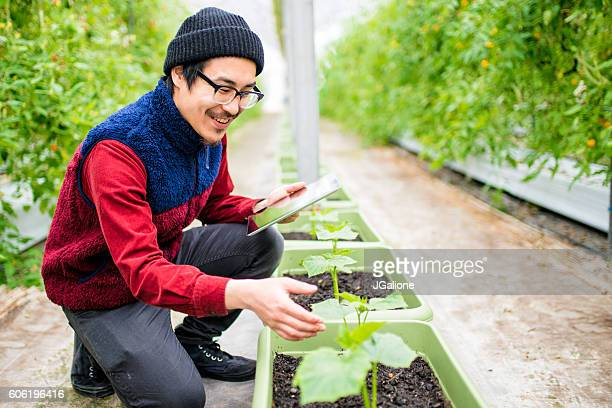 farmer conducting research using a digital tablet in a greenhouse - jgalione stock pictures, royalty-free photos & images