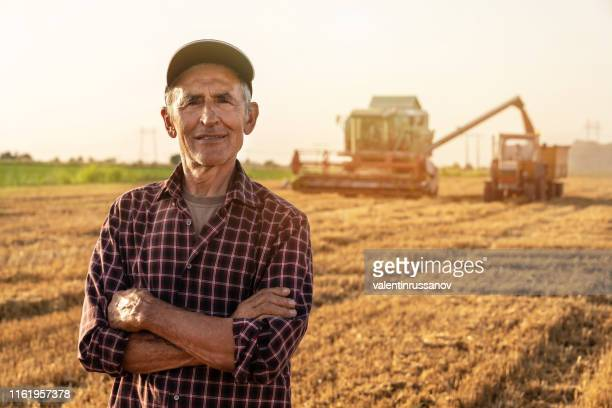 farmer controlled harvest in his field stock photo - farm worker stock pictures, royalty-free photos & images