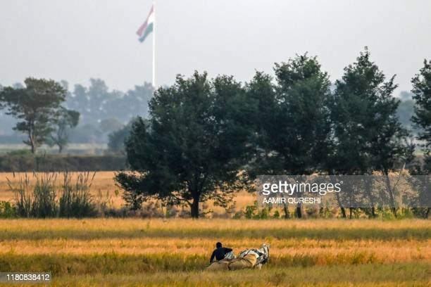 A farmer crosses a rice field on a horse cart as the Indian national flag waves in the background near the shrine of Baba Guru Nanak Dev at Gurdwara...