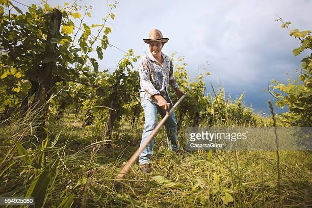 Landwirt moderne Gras