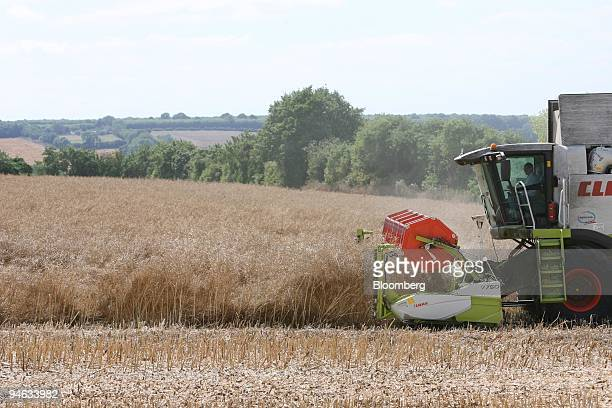 Farmer Derek Roy Broster drives a combine to harvest rapeseed at Woodstock Farms in Kent UK Tuesday August 9 2006 Rapeseed or Canola is used in...