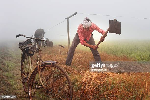 Farmer Digging In The Field