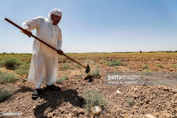 Farmer digs with a shovel in an agricultural field in his farm in the Khanaqin area, north of Diyala, in eastern Iraq on June 24, 2021. - As Iraq...