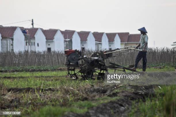 Farmer doing activities in the paddy fields that has been surrounded by residential buildings due to increasing urban flows in Cikarang regency West...