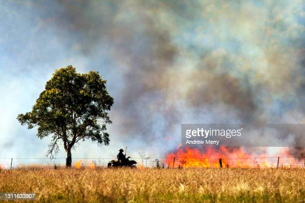 farmer doing controlled burn, bushfire flames, smoke clouds, tree, australia - extreme weather stock pictures, royalty-free photos & images
