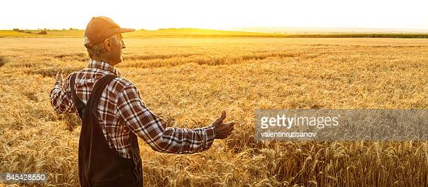 Farmer enjoying successful harvest - copy space
