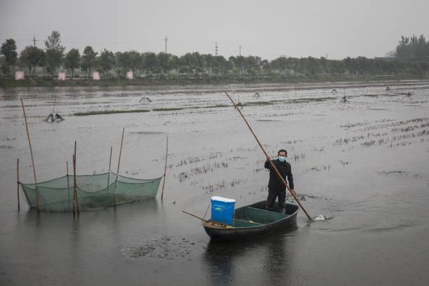 CHN: Hubei Works To Reboot Local Economy As Coronavirus Cases Under Control