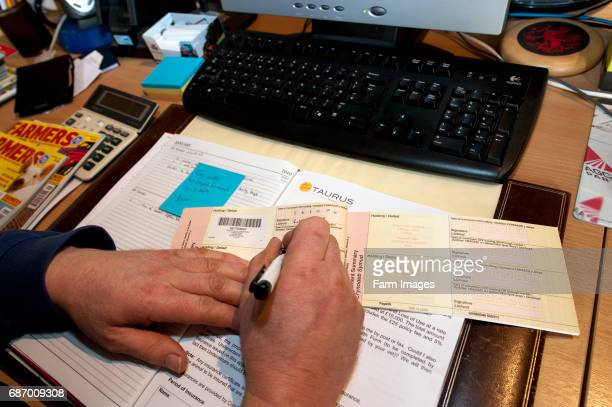 Farmer filling out Cattle Passports in the farm office.