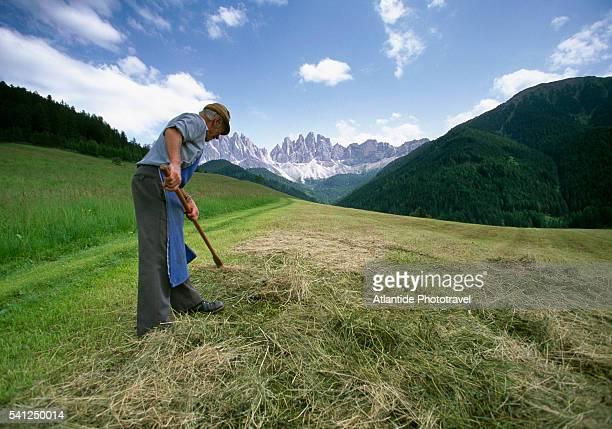 Farmer Frans Lambacher in Funes Valley