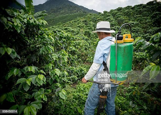 Farmer fumigating a coffee crop