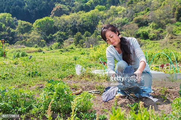 Farmer harvesting her crops