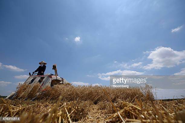 A farmer harvests a wheat with an Iseki Co combine harvester in Chiyoda Town Gunma Prefecture Japan on Sunday June 7 2015 Japan's gross domestic...